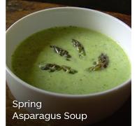Asparagus Soup