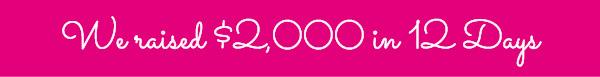 We raised $2,000 in 12 Days