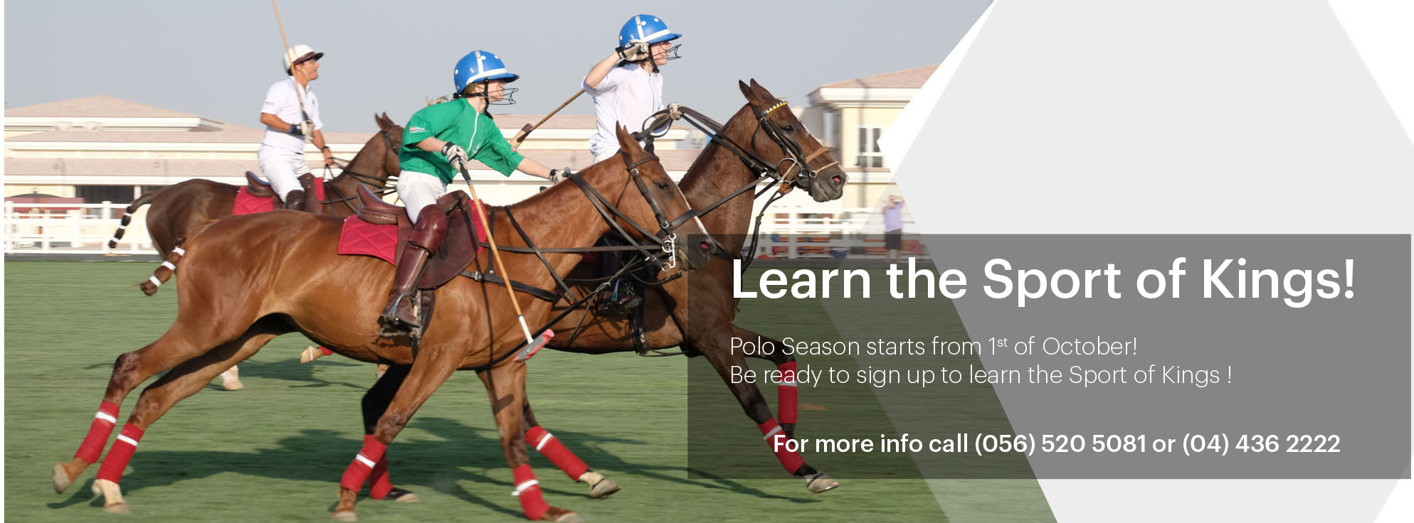 The St Regis Polo Brunch - Book now on 044355577