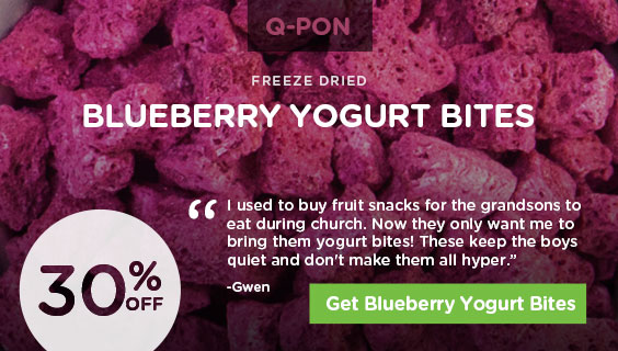 Q-Pon Blueberry Yogurt Bites
