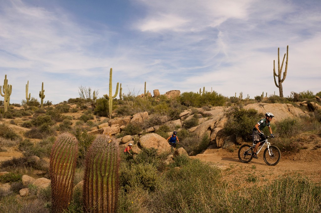 Ride the sonoran desert singletrack on a 3 day guided mountain bike trip with AOA