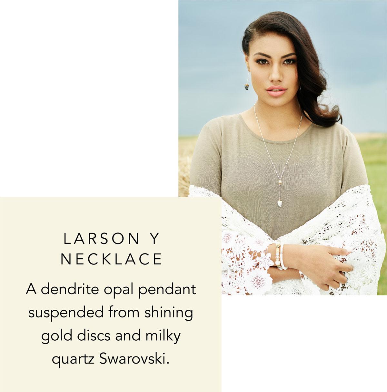 Larson Y Necklace