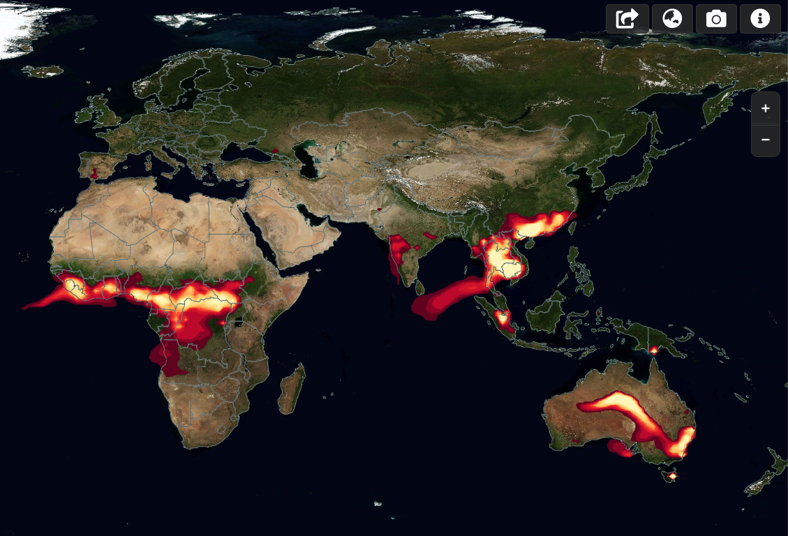 WACCM fire forecasts in Worldview