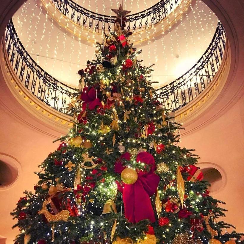THE CHRISTMAS ROUNDUP