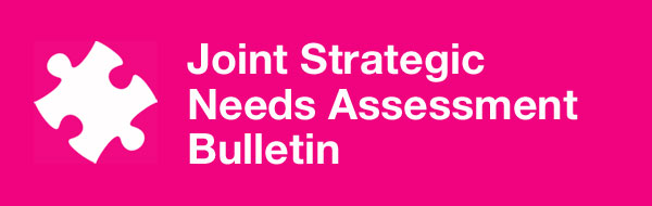 Joint Strategic Needs Assessment Bulletin header image
