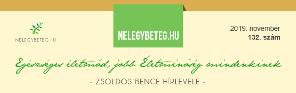 Zsoldos Bence Hírlevele