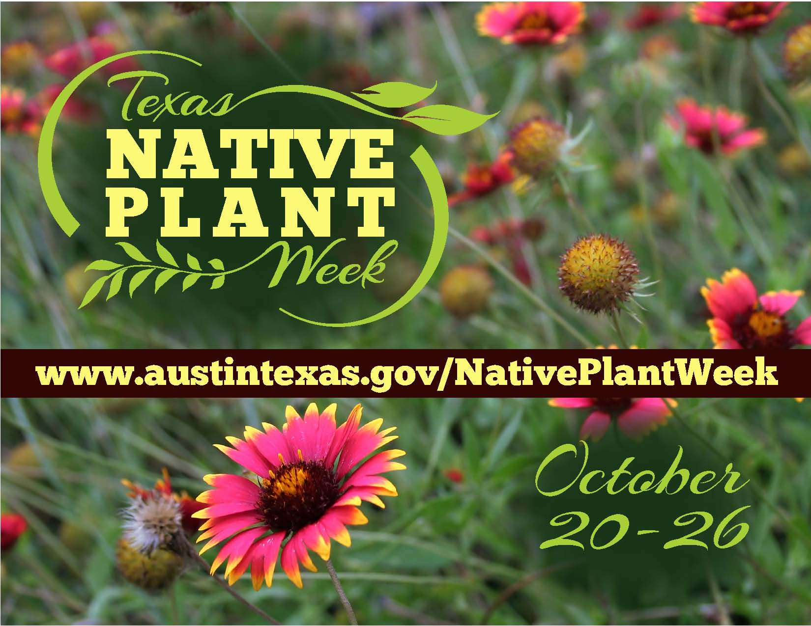 Native Plant Week Oct. 20-26