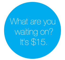 What are you waiting on? It's $15.