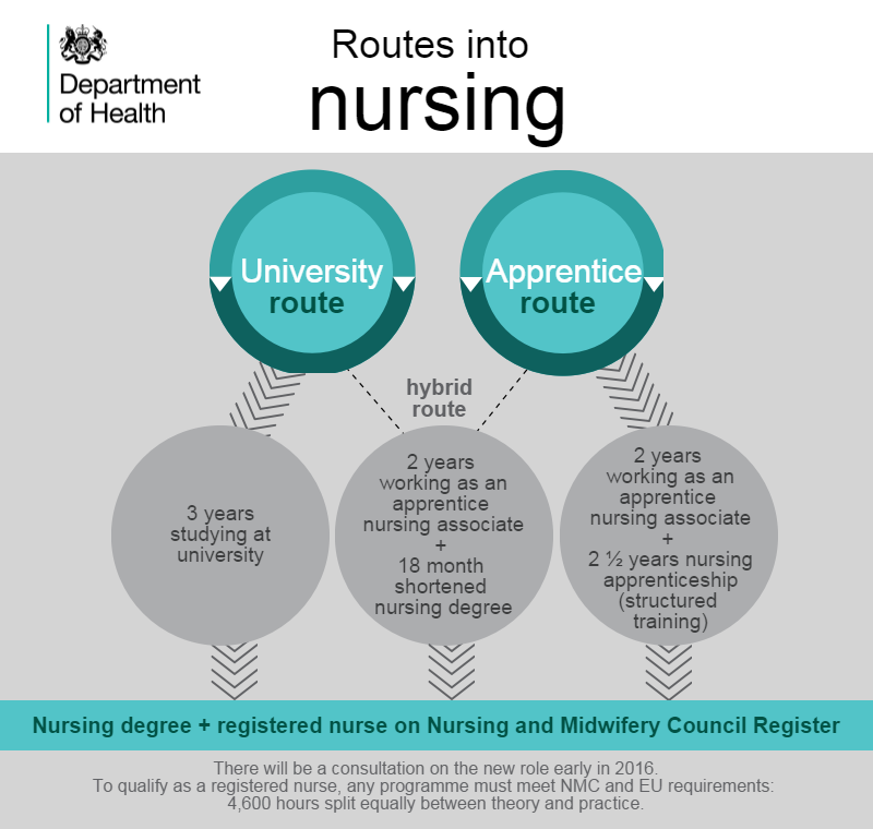 Routes into nursing infographic