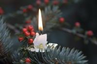 Ein brennender Weihnachtsbaum runiert das Fest!