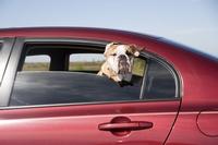Frühjahrscheck für Ihr Auto