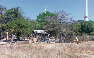One of the Oaxaca ranches where cattle have been lost to the drought