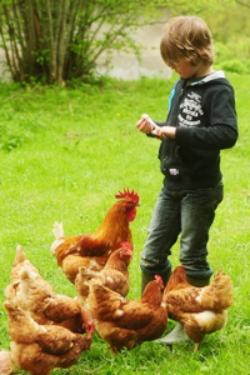 Kimaro Farmhouse Bourgondië