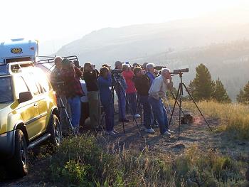 Photo of wildlife watchers.