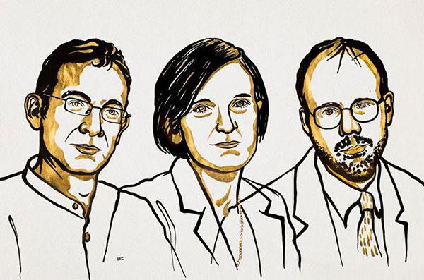 Illustration of Abhijit Banerjee, Esther Duflo and Michael Kremer