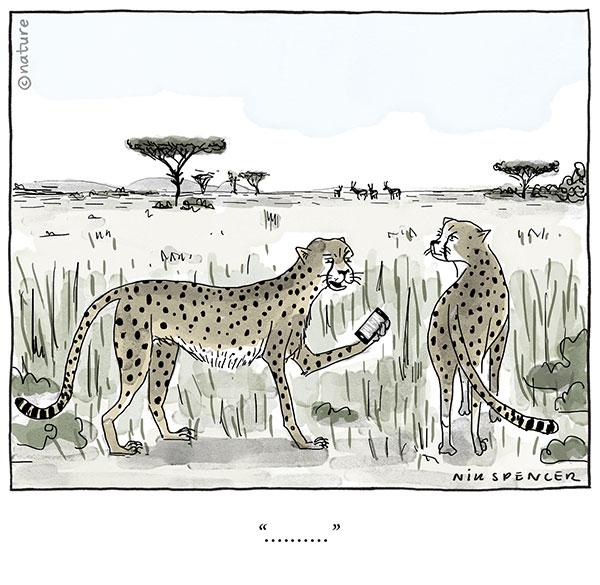 Cartoon: Cheetah holding a mobile phone