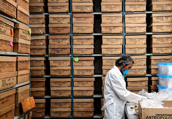 An archaeologist works on the osteological collection at the Anthropology National Museum in Mexico City.