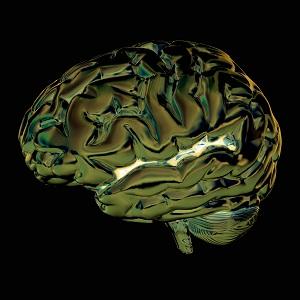 Afbeelding van het menselijk brein