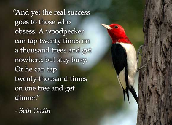 And yet the real success goes to those who obsess. A woodpecker can tap twenty times on a thousand trees and get nowhere, but stay busy. Or he can tap twenty-thousand times on one tree and get dinner. Seth Godin