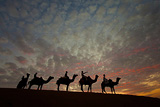 Photography Tour of Rajasthan