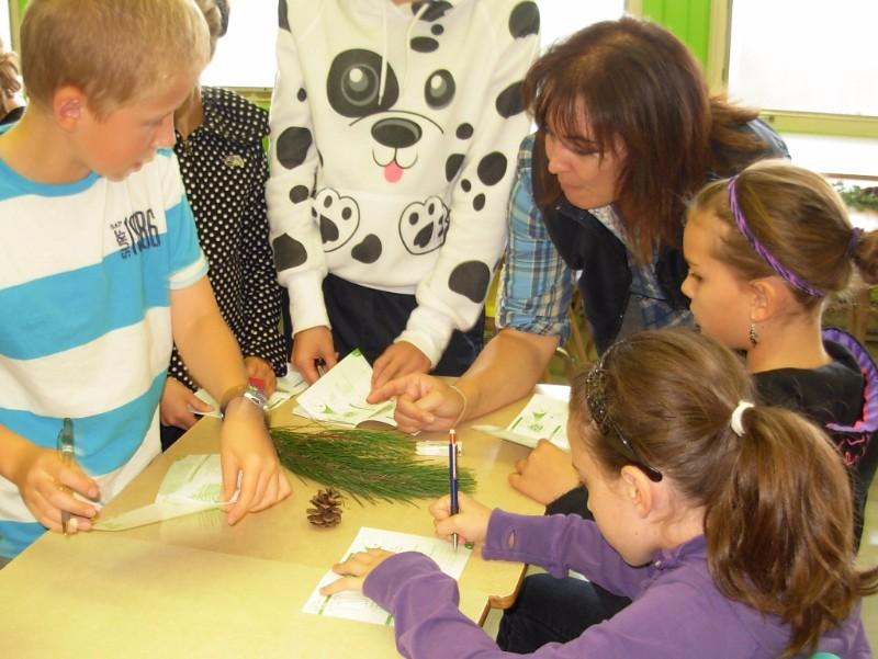 Atelier éducatif forestier en milieu scolaire