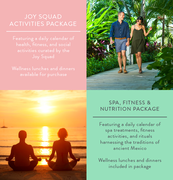 Vidanta Wellness