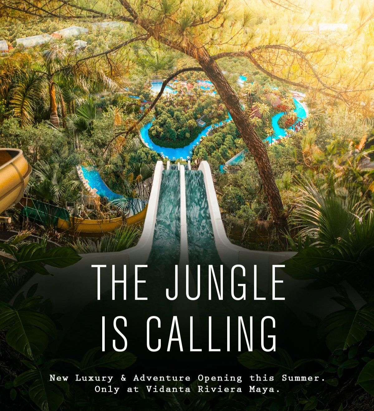 The Jungle is Calling