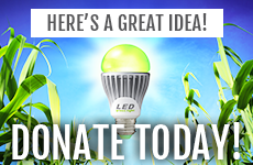 DONATE today to SEEDS!