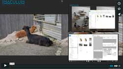 Importing images into Imaculum