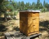 Randall's Corner Beehive