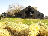 Winterport Barn