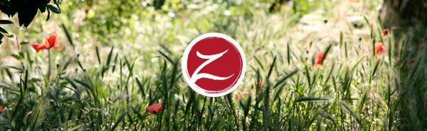 zenotica.com