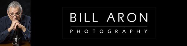 Click here to see Bill Aron Photography's portfolio.