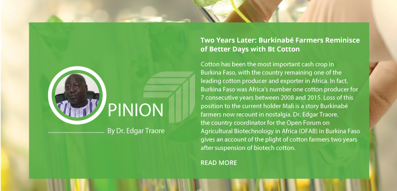 Two Years Later: Burkinabé Farmers Reminisce of Better Days with Bt Cotton