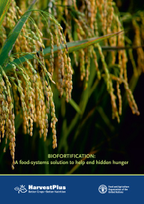 Biofortification: A food-systems solution to help end hidden hunger