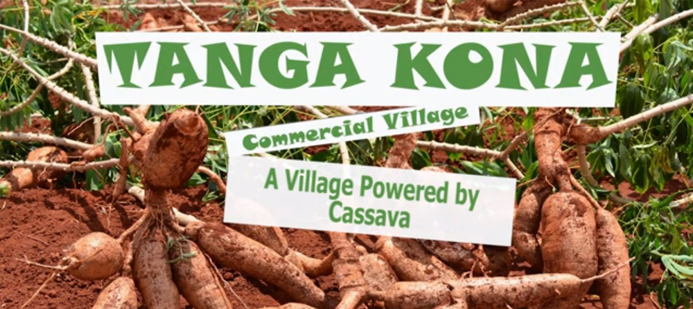 Tanga Corner - A Village Powered by Cassava