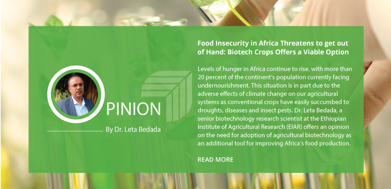 Food Insecurity in Africa Threatens to get out of Hand: Biotech Crops Offers a Viable Option