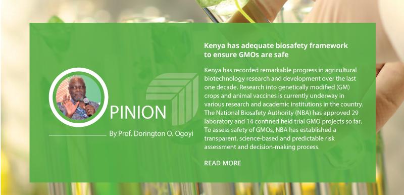 Kenya has adequate biosafety framework to ensure GMOs are safe