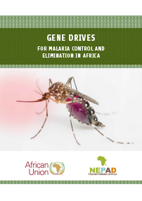Gene Drives for Malaria Control and Elimination in Africa