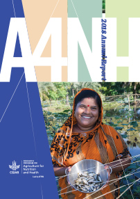 Agriculture for Nutrition and Health (A4NH): 2018 Annual Report