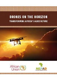 Drones on the Horizon: Transforming Africa's Agriculture