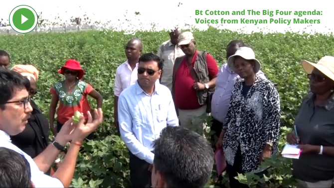 BT Cotton and The Big Four agenda: Voices from Kenyan Policy Makers