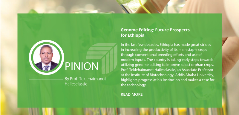 Genome Editing: Future Prospects for Ethiopia