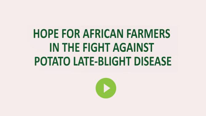 Conquering Potato-late-blight Disease