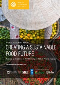 Creating a Sustainable Food Future: A Menu of Solutions to Feed Nearly 10 Billion People by 2015