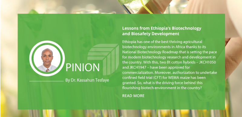 Lessons from Ethiopia's Biotechnology and Biosafety Development