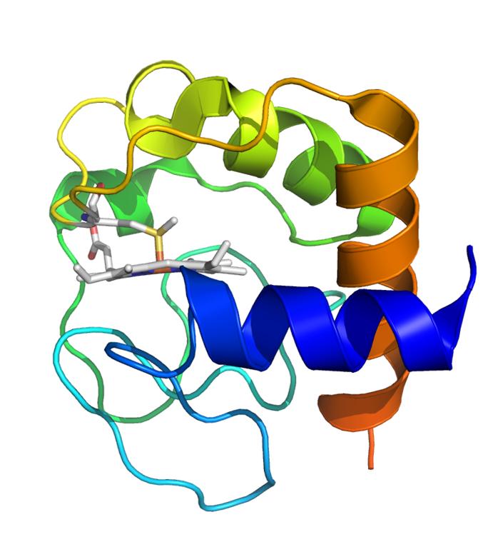 Cytochrome C (reduced form) (5DFS, 5TY3)