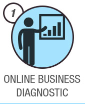 Online Business Diagnostic
