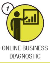 Online Business Diagnostic