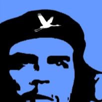 2012-10 guerilla